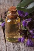 Extracto de salvia en una pequeña botella sobre la mesa de macro — Foto de Stock
