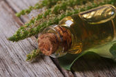 Extract of plantain in a glass bottle horizontal — Stock fotografie