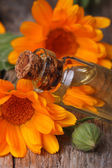 Calendula tincture in glass bottle macro vertical — Stock Photo