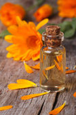 Calendula tincture in glass bottle and flowers vertical — Stock Photo
