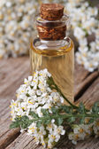 Extract of yarrow in a bottle with flowers vertical macro — Stock Photo