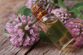 Clover  tincture in a bottle nd flowers macro horizontal — Stock Photo