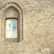 Ancient arched window — Stock Photo