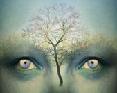 Dromerige ogen — Stockfoto