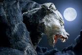 Hombre lobo — Foto de Stock