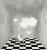 Clouds and ducks in a surreal room — Stock Photo