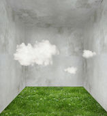Clouds and grass in a room — Stock Photo