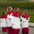 Procession of Maria Ascension in Axams Austria — Stock Photo