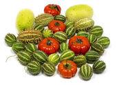 Decoratie vruchten — Stockfoto
