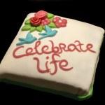Celebrate life cake — Stock Photo #14887307