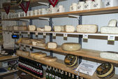 Typical dutch cheese shop — Stock Photo