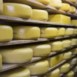Cheese factory - Stockfoto