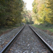 Railroad track — Stock Photo #34618985