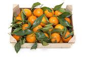 Wooden box with mandarines — Stock Photo