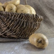 Stock Photo: Basket with potatoes