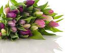 Mazzo di tulipani — Foto Stock
