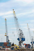 Big cranes in dutch harbor — Stock Photo