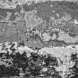 Grungy stucco background - 