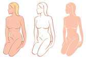 Female Nudes — Stock Vector