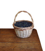 Basket with a bilberry, it is isolated. — Stock Photo