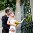Bride and groom — Stock Photo #15310377
