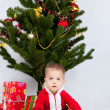 Boy near christmas pine — Stock Photo #15944097