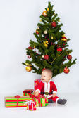 Boy near christmas pine — Stock Photo