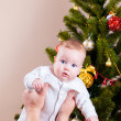 Stock Photo: Baby near christmas pine