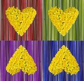 Coração de narcisos — Fotografia Stock