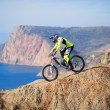 Mountain bike rider — Stock Photo #20756199