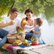 Family on picnic — Stockfoto #21147477
