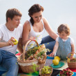 Family on picnic — Stockfoto #21147489
