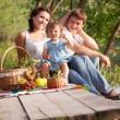 Family on picnic — Stockfoto
