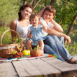 Family on picnic - Stockfoto