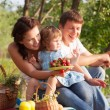 Foto de Stock  : Family on picnic