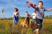 Family on the poppy meadow — Stock Photo