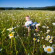 Little boy on the meadow — Stock Photo