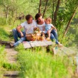 Family on picnic — Stock Photo #31054673
