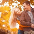 Couple in autumn park — Stock Photo #32344667