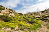 Sardinia, Gallura, Valle della Luna — Stock Photo