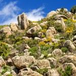 Sardinia, Genis Mountain — Stock Photo #47647259