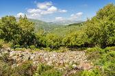 Sardinië, gerrei platteland — Stockfoto