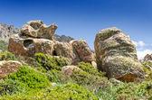 Sardinia, Gerrei — ストック写真
