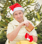 Grandmother with christmas gifts — Stock fotografie