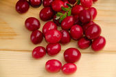 Ripe cranberries — Stock Photo
