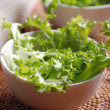 Lettuce in bowl — Stock Photo