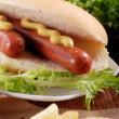 Stock Photo: Hot dog with mustard
