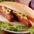 Hot dog with mustard — Stock Photo #18904863