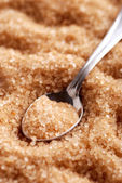 Brown sugar — Stockfoto