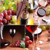 Red and white wine collage — Stock Photo